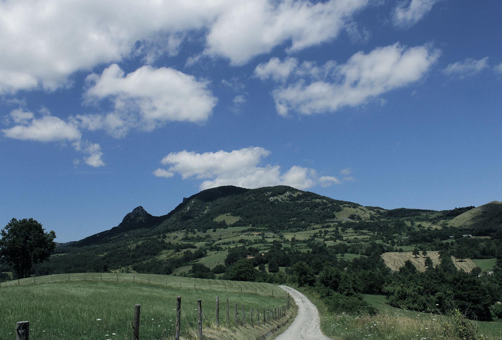Masseria Montepizzi - Dimora Rurale